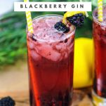 Muddled Blackberry Gin Cocktail in highballs. Blackberries on wooden table and cocktail picks. Lemons and greenery behind glasses.