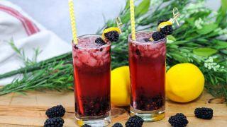 Muddled Blackberry Gin Cocktail