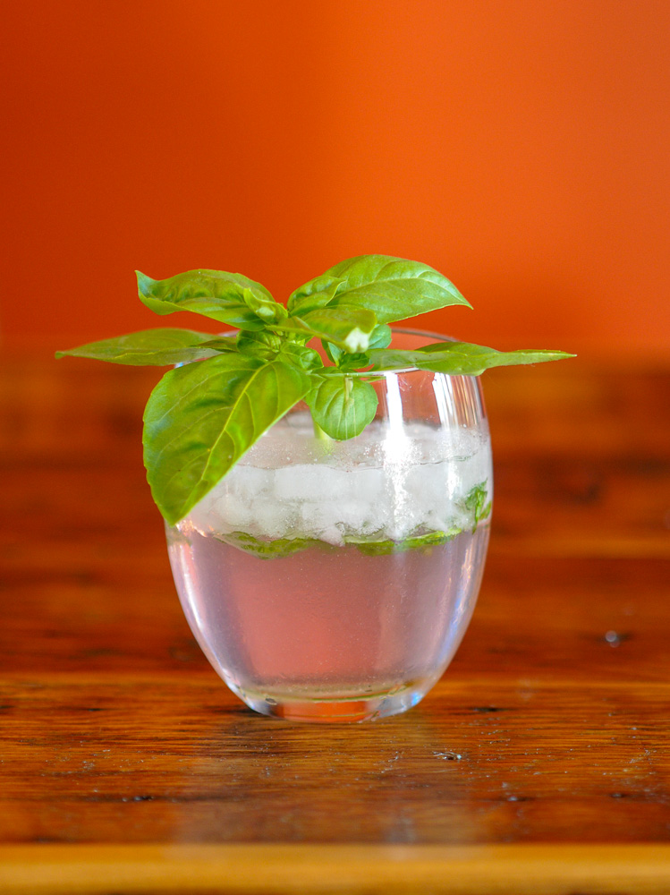 Rhubasil Cocktail in a glass with a bunch of basil