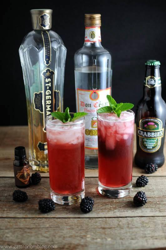 St Pisco Cocktail in two highball glasses with mint leaves. Blackberries, bitters, ginger beer bottle, St Germain Elderflower Liqueur bottle and pisco bottle