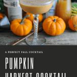 Pumpkin Harvest Cocktail in Coupe, pumpkins and bottles behind