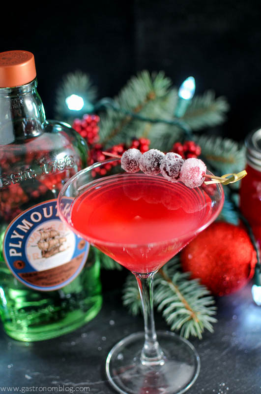 Cranberry Orange Shrub Cocktail in a martini glass with sugared cranberries, gin bottle and greenery behind