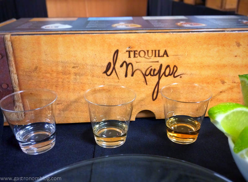 El Mayor tequila tasting