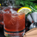 Pink cocktail in rocks glass, lemon slice, reamer and jigger