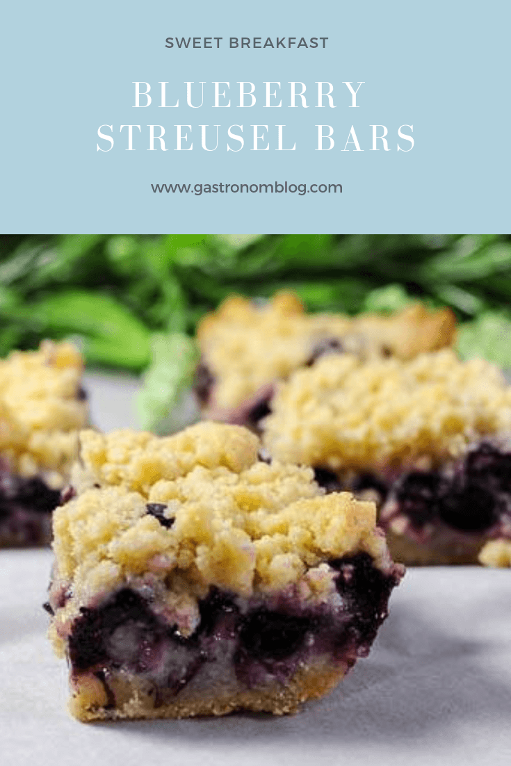 Blueberry Streusel Coffee Cake Bars with fresh blueberries. Great recipes for easy breakfast or brunch from Gastronomblog! #recipes #recipe #baking #blueberries #gastronomblog