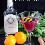 Purple cocktail in martini glass, orange peel, oranges, vodka bottle