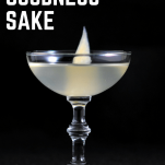 For Goodness Sake Cocktail, in coupe with slice of pickled ginger in front of black background