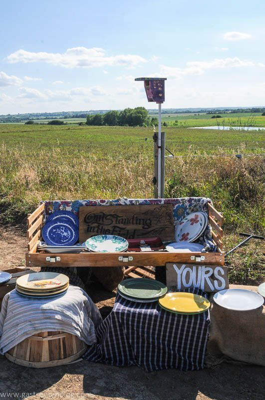 Plates stacked on a trunk in a field