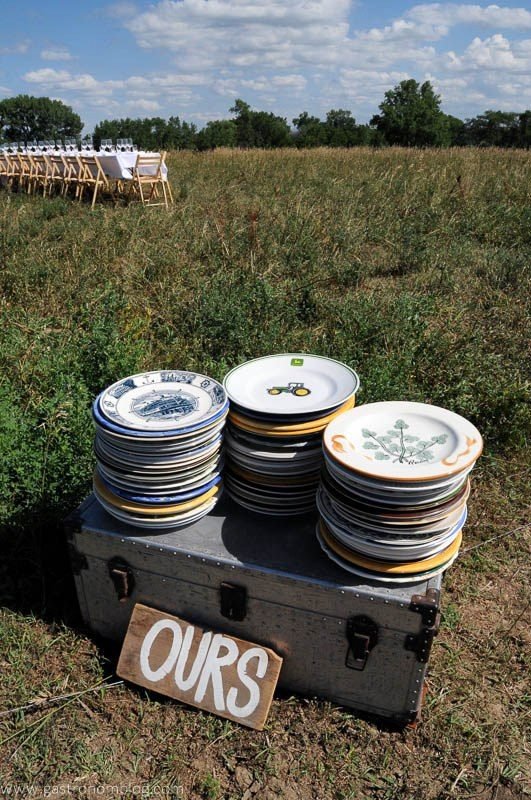 Plates on trunk in a field