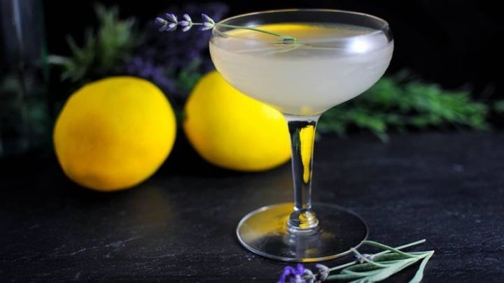 Lavender Bee's Knees cocktail with coupe