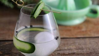 Snap Pea Gin and Tonic