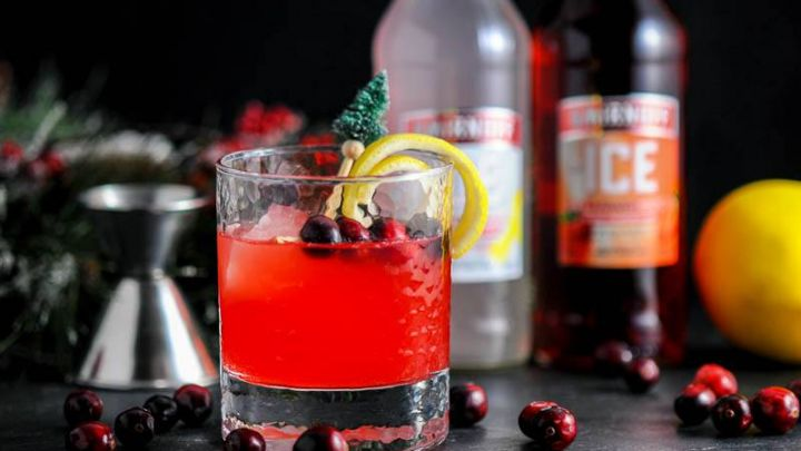 Holiday Berry Sparkler - A Holiday Cocktail