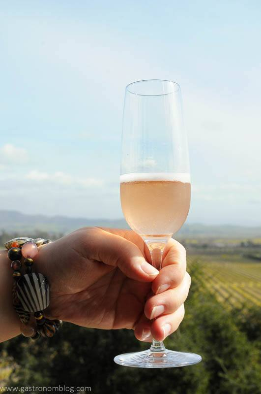 Hand holding a champange flute filled with Gloria Ferrer Blanc de Noirs Sparkling wine in front of a vista of the Sonoma Valley.