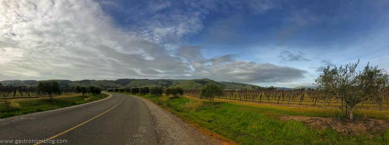 Panoramic view of Gloria Ferrer Caves and Vineyard in Sonoma, California