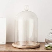 "Glass Cloche Bell Jar Display Dome with Bamboo Base - 9"" x 6"""