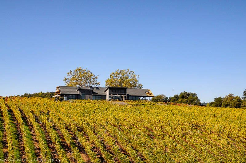 The tasting room of MacRostie Winery in Sonoma County, Caifornia sits atop a hill surrounded by grape vines.