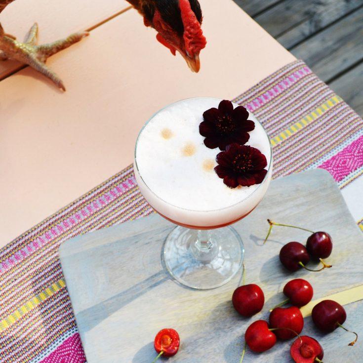 Chocolate Cherry Pisco Sour
