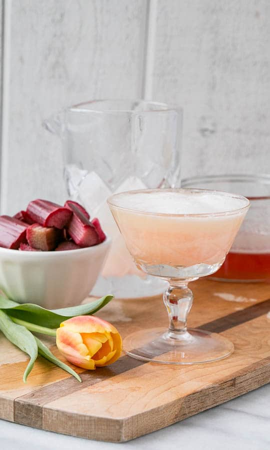 Rhubarb Pisco Sour