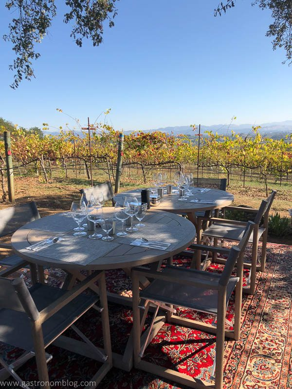 Chairs and tables set on a carpet in the vineyard for a picnic