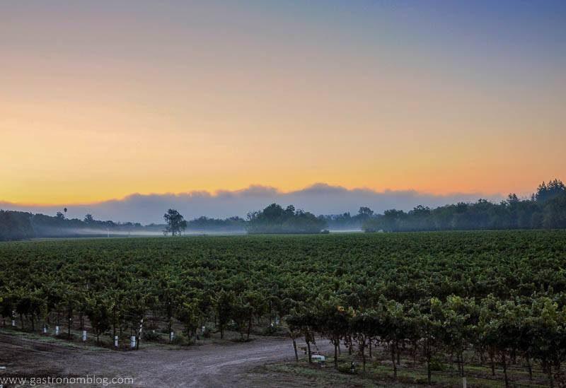 Sunrise over Thomas George Estates