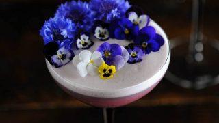 Blackberry Lavender Gin Sour