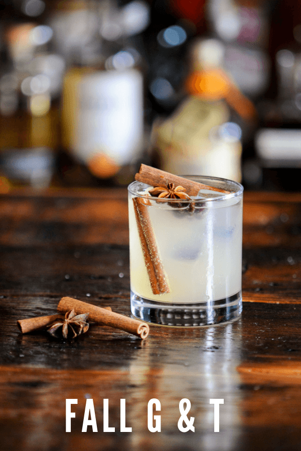 This cocktail recipe is a twist on the classic, a fall gin and tonic. Great spice garnishes perfect for fall! #gastronomblog #cocktails #cinnamon #gin #apple