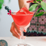 Red cocktail in coupe, berries on pick, hand holding glass
