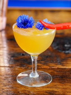 Hot Honey Cocktail in coupe with chili pepper and edible flower